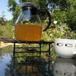 Mädesüß-Tee