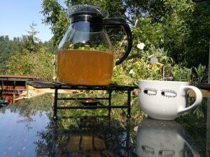 Mädesüß-Tee - - Es gibt kein Unkraut