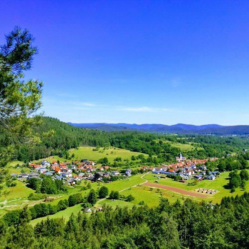 Blick Pfälzerwald