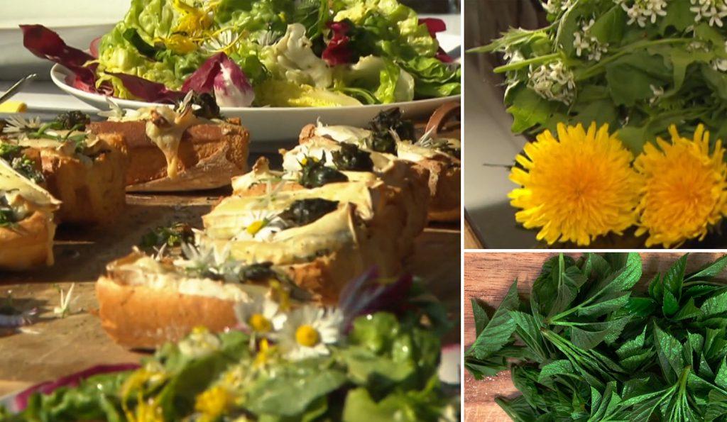 Wildkräutersalat mit Baguette